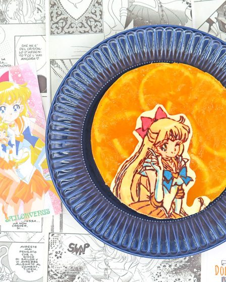 Torta mousse arancia e cioccolato di Sailor Venus